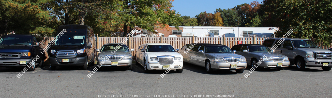 Luxurious Vehicles at Blue Limo Service